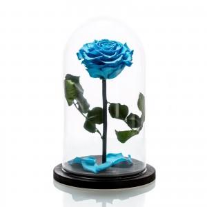 Trandafir criogenat albastru
