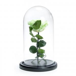 Trandafir criogenat verde mare