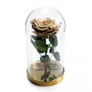 Trandafir criogenat auriu