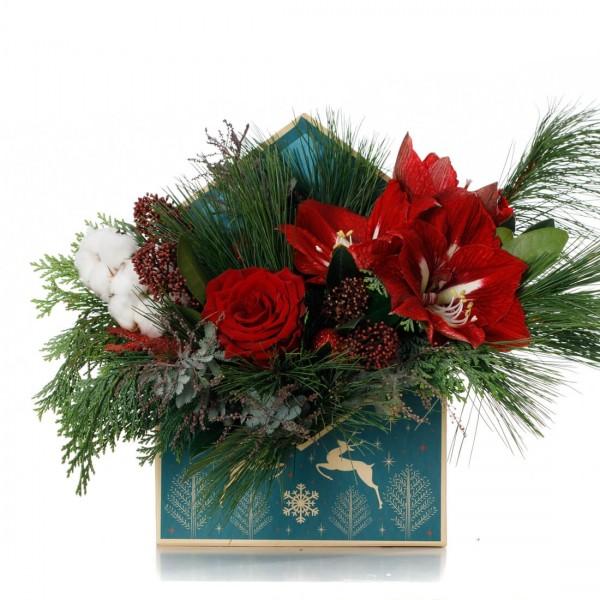 Aranjament floral in plic de Craciun cu amaryllis si bumbac