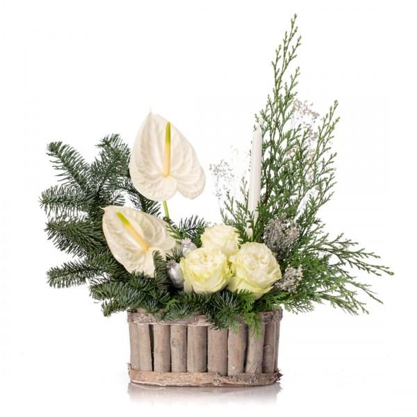 Aranjament floral cu trandafiri albi, brad si anthurium - Colectia de Craciun