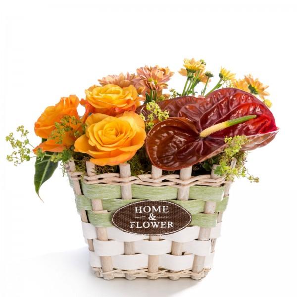 Aranjament floral in cos din trandafiri, anthurium