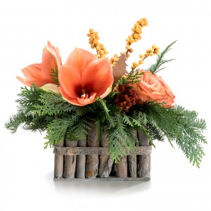 Aranjament de Craciun cu Protea
