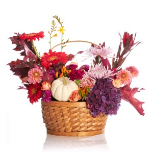 Aranjament floral in cos cu crizanteme