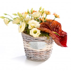 Aranjament floral in cos din lisianthus, anthurium, crizantema