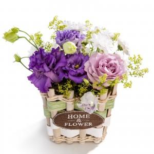 Aranjament floral in cos din trandafir, crizantema, alchemilla