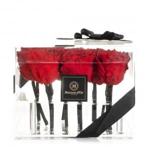 Cutie acrilica cu 15 trandafiri criogenati rosii
