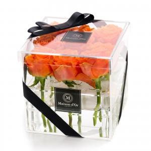 Cutie acrilica 9 trandafiri portocalii