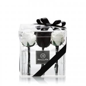 Cutie acrilica 9 trandafiri criogenati nergi si albi