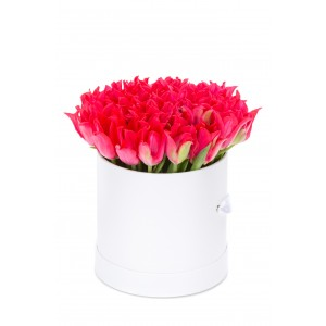 Cutie cu 31 de lalele rosii