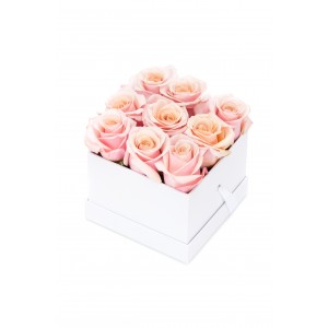 Cutie alba 9 trandafiri roz