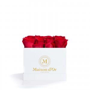Cutie alba 17 trandafiri rosii