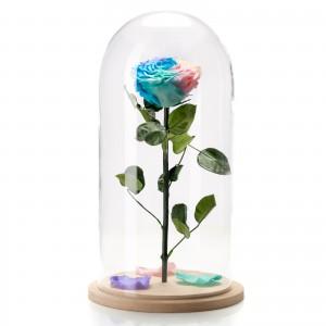 Trandafir nemuritor multicolor in cupola de sticla mare