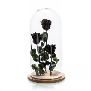 Aranjament 3 trandafiri criogenati negri