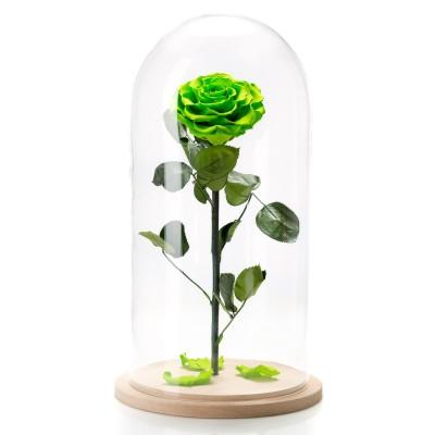 Trandafir criogenat verde neon in cupola mare de sticla
