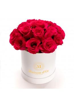 Cutie alba 19 Trandafiri cyclam