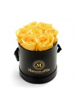 Cutie rotunda 9 trandafiri galbeni