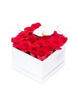 Cutie cu trandafiri rosii si orhidee alba