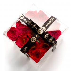 Cutie acrilica cu 15 trandafiri rosii