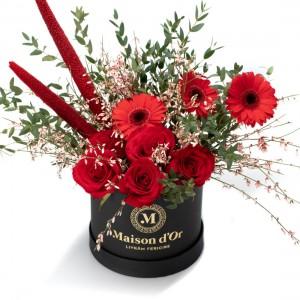 Cutie cu germini, trandafiri rosii si genista