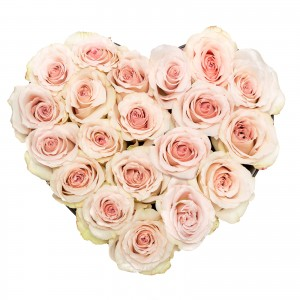 Cutie inima 21 trandafiri rosé
