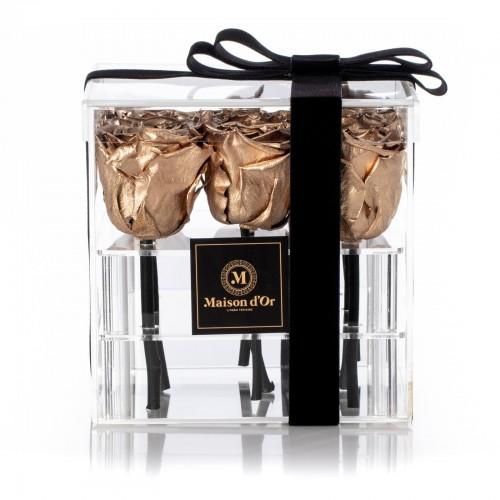 Acrylic Box 9 Golden Cryogenic Roses