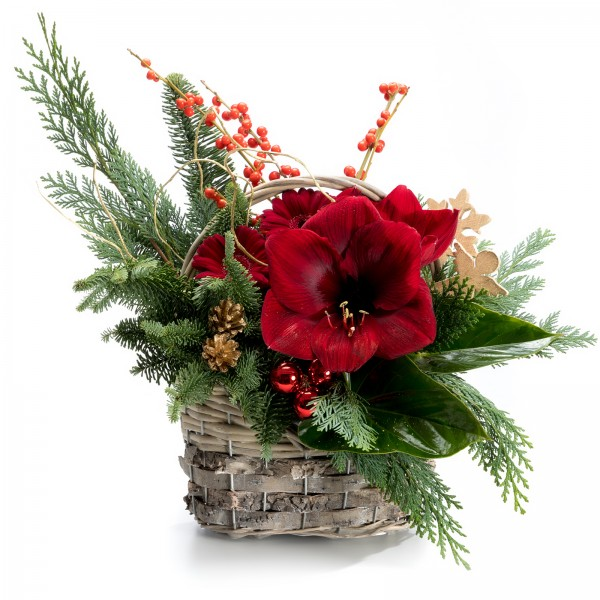 Christmas arrangement with Ilex