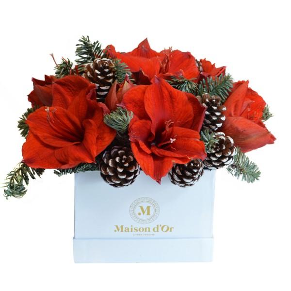 Christmas decorative arrangement