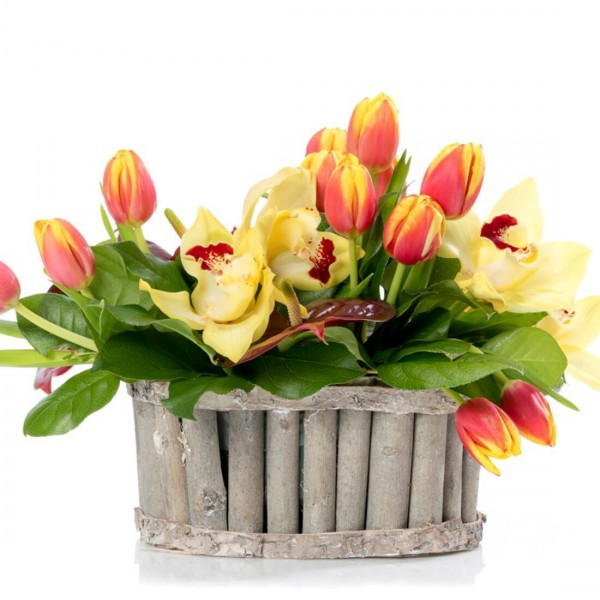 Floral arrangement in basket with tulips