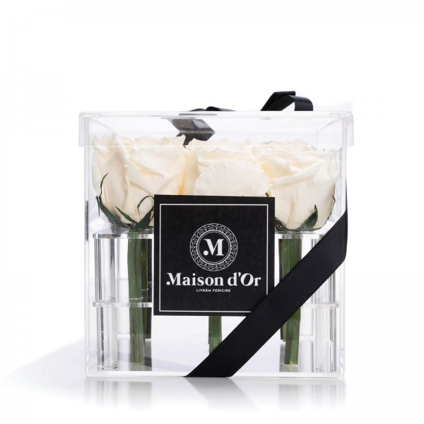 Box of 9 cryogenic champagne roses