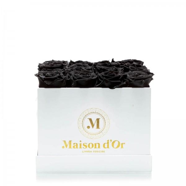 Box of 17 black cryogenic roses