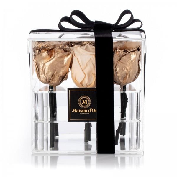 Acrylic Box 9 Cream and Gold Cryogenic Roses