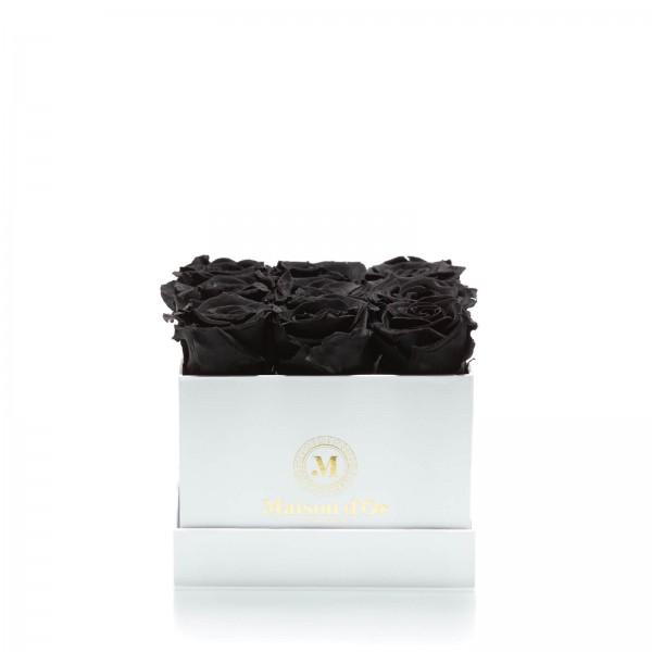 Box of 9 black cryogenic roses