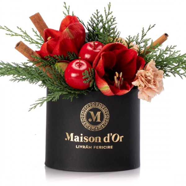 Box with amaryllis and carnations - Christmas Collection