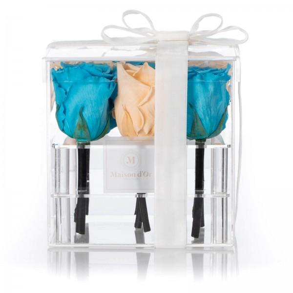 Acrylic Box 9 Cryogenic Roses Blue and cream