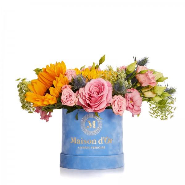 Cutie de catifea cu floarea soarelui, Moulins