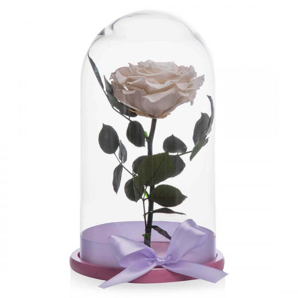 White Cryogenic Rose Happy Little Girl