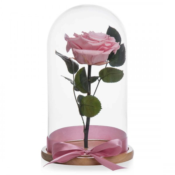 Pink cryogenic rose happy little girl