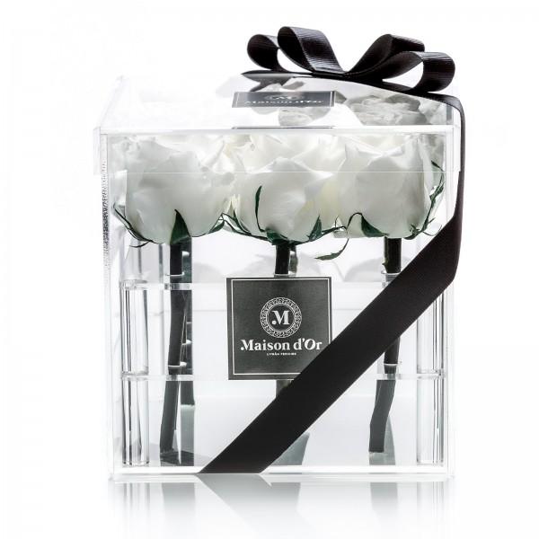 Acrylic box 9 cryogenic roses
