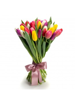 Bouquet of 35 multicolored tulips