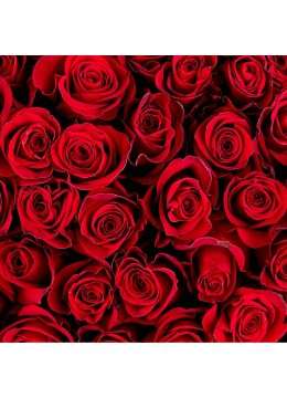 Bouquet of roses in any number