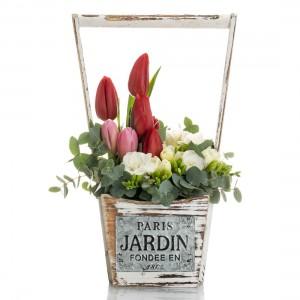 Aranjament floral in cos cu frezii Jolie