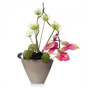 Aranjament floral cu anthurium si allium