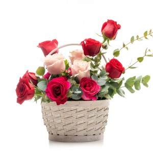 Floral arrangement in basket of pink roses, cyclamen, tomatoes