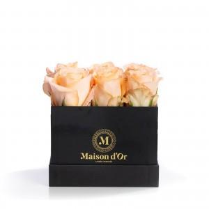 Square box 9 peach roses