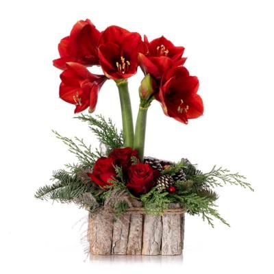 Aranjament floral cu amaryllis rosu, trandafiri rosii si globuri