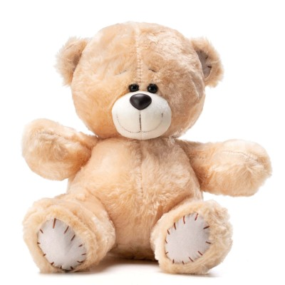 Ursulet de plus Little Teddy
