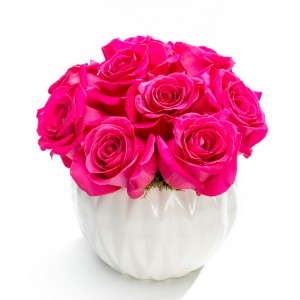 Business floral arrangement with 9 cyclam roses