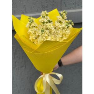 Bouquet of flowers 9 matthiola cream