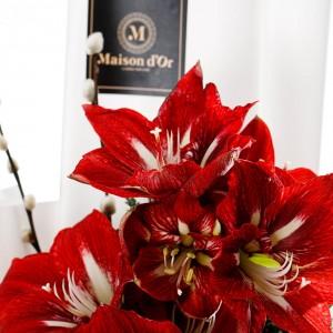 """""""Crimson Christmas"""" Flowers bouquet"""